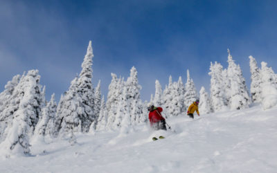 It's January–Are the Steeps Open?