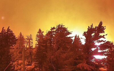 Sierra-at-Tahoe Looks to Rise from Wildfire Ashes
